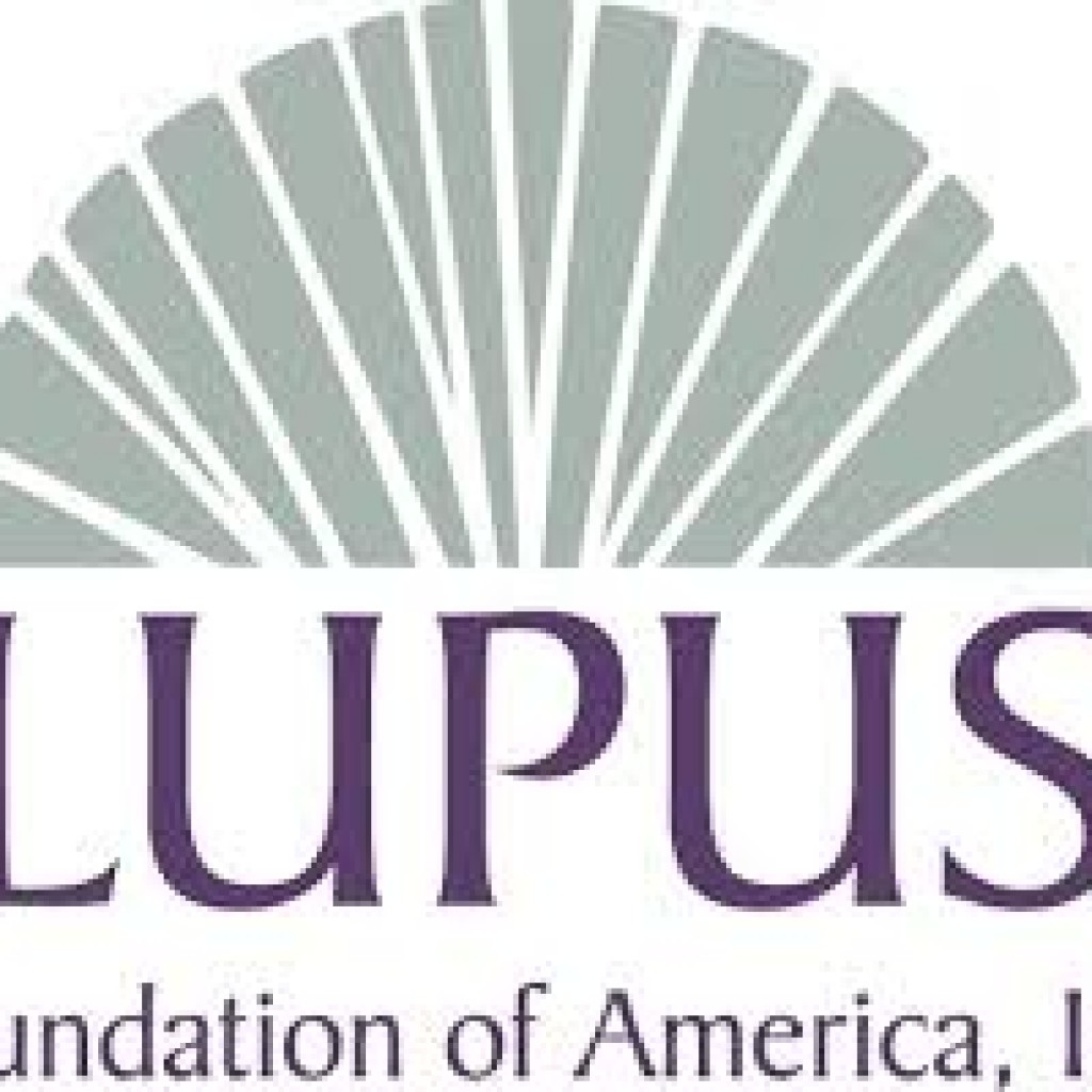 Lupus Specialists Teach How to Manage Disease at LFAFL Seminar