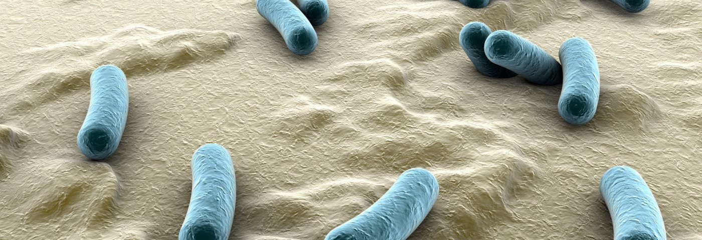 Intestinal Dysbiosis Promotes Pro-inflammatory Environment in SLE Patients