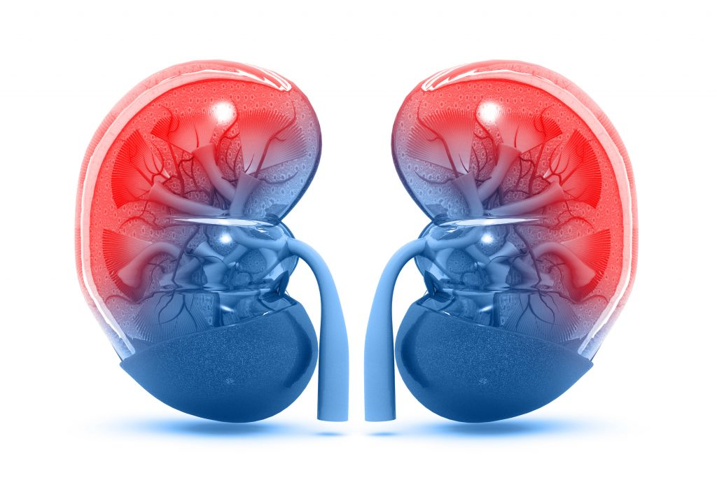Aurinia to Provide Update on Lupus Nephritis Trial Results at Select Event on Friday