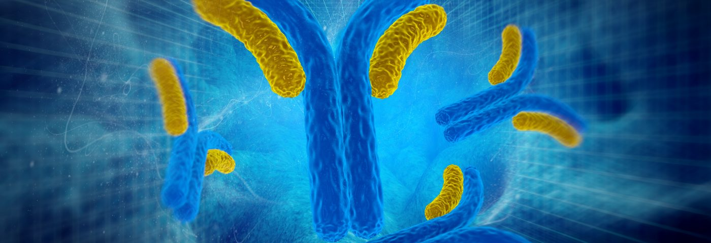 IL-6 Antibody at Low Dose Can Ease Severe Flares in People with Active SLE, Study Reports