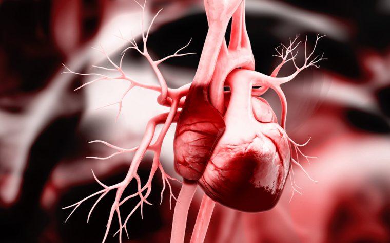 Lupus heart disease test