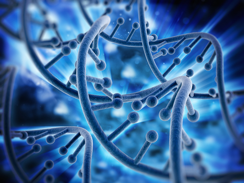 Specific Changes in Genetic Sequence of Glucocorticoid Receptor Linked to Lupus in Chinese Study